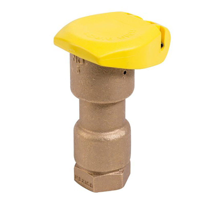 1 in. 1-Piece Quick Coupler Valve with Rubber Cap