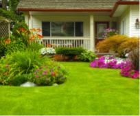Home front yard with turf and large planter beds