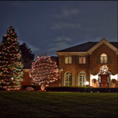 A front yard with holiday lights on display