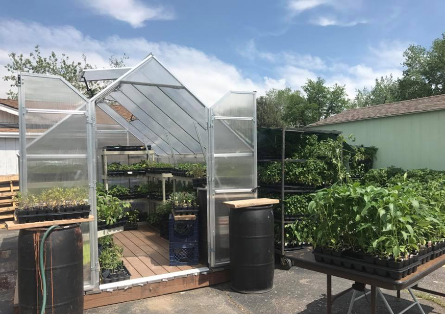 Image of a greenhouse and a garden