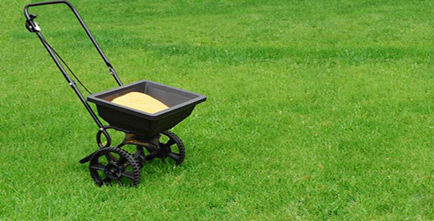 Image of a spreader on grass