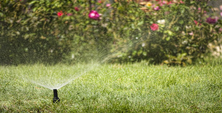 Image of sprinkler watering the grass