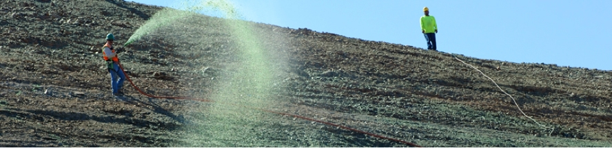 A hillside being sprayed with a hose